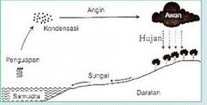 siklus sedang hodrologi