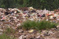 Pengertian Pencemaran Daratan Menurut Para Ahli