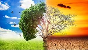 Pengertian dan jenis iklim